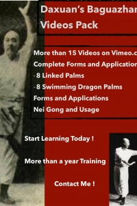 Bagua Zhang - Internal Martial Arts Linked Palms and Swimming Dragon