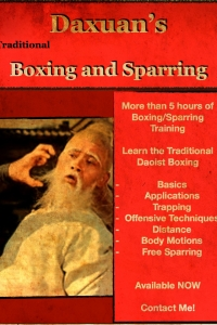 Da Xuan Traditional Boxing, Sparring, Trapping and other techniques