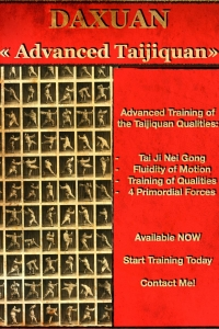 Taiji Quan including training of taiji neigong, qualities and 4 primordial forces