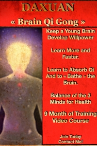 Brain Qi Gong to Balance the Mind and Learn Faster