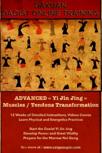 Yi Jin Jing Tendon Transformation for Power and Vitality