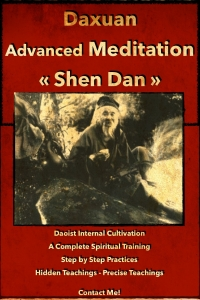 Advanced Meditation - Shen Dan Spiritual Training