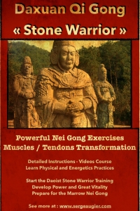 Stone Warrior Tendon Changing Qigong for Power and Vitality