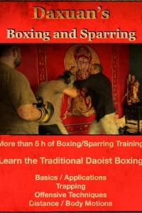 Traditional Daoist Boxing Basic Applications and Techniques