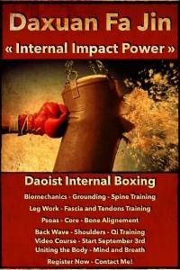Fa Jin Internal Impact Power
