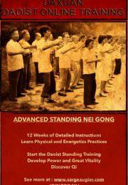 Standing Nei Gong